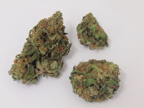 Buy Critical Mass Marijuana Strain UK