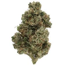 Buy Ghost Train haze Marijuana Strain -UK